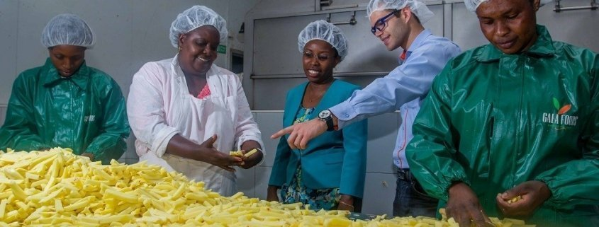 GroFin Kenya Client GAEA Foods
